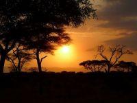 Povestea remarcabila a tanarului care face milioane de dolari din soarele Tanzaniei