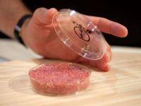 Olandezii au lansat primul burger creat in vitro, din celule stem de vaca. Pret: 250.000 de euro