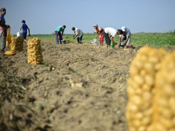 Fermierii pot sa solicite acreditarea Ministerului Agriculturii pentru aderarea la fondurile mutuale