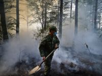 Incendii de padure in Portugalia