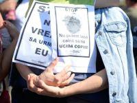 Un nou protest fata de problema maidanezilor in parcul Izvor din Capitala