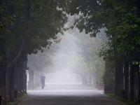Cod galben de ceata in Bucuresti si 12 judete din tara