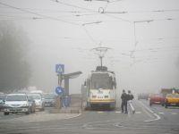 Cod galben de ceata in 28 de judete