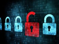 Hackerul  Guccifer , suspectat ca a spart conturile de e-mail ale mai multor persoane publice, prins la Arad