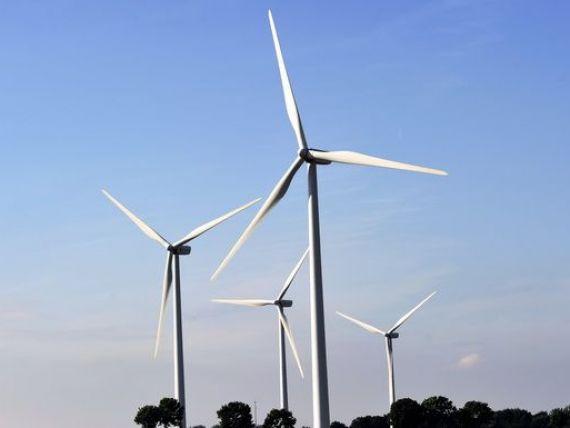Viscolul a invartit moristile: eolienele au realizat ieri 20% din productia de energie a tarii, record de masini made in Romania si de saptamana viitoare, incepe sfarsitul Internetului asa cum il stiam