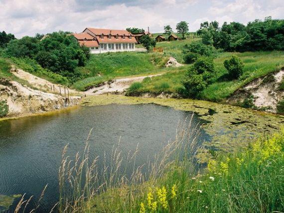 Basescu indeamna investitorii straini spre turismul balnear:  In Romania, sanatatea izvoraste din pamant. Credeti in noi, veti avea profit