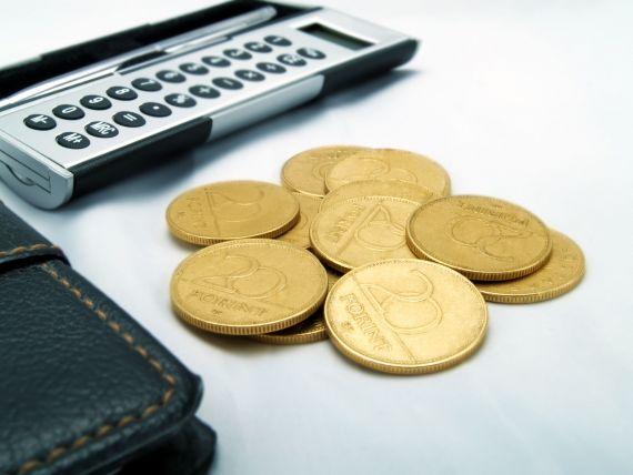 Guvernul promite cresterea castigului salarial mediu net cu minimum 5%, in 2014 si 2015, si un salariu minim de 200 de euro in acest an