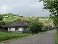 Un sat intreg, sub sechestru in Arad. Schema prin care o singura familie a pus mana pe 8.000 de hectare, cu tot cu case