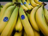 Compania americana Chiquita si cea irlandeza Fyffes vor fuziona, creand cel mai mare distribuitor de banane din lume, cu vanzari de 5 mld. dolari