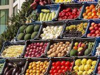 Inflatia anuala din UE a incetinit la 0,8%. Sase state membre au raportat scaderi ale preturilor