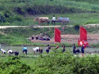 Coreea de Nord, afectata de cea mai grava seceta de dupa 1982