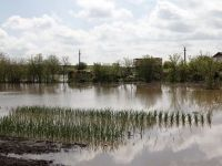 Avertizare COD ROSU pe raul Motru. Trafic rutier si feroviar restrictionat si zeci de gospodarii inundate, in Mehedinti
