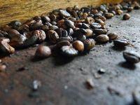 Strauss Coffee, locul 2 pe piata cafelei solubile din Romania, dupa preluarea Amigo