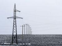 Profitul Transelectrica a urcat cu 84% anul trecut, la 370 milioane lei