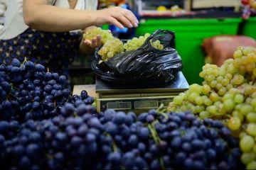 Liber la vanzarea de fructe moldovenesti pe pietele din UE, dupa ce Moscova a interzis importurile de la Chisinau. Produsele, de 3 ori mai ieftine decat cele romanesti, omoara micii fermieri
