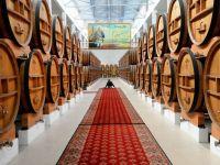 Consecintele semnarii Acordului de asociere cu UE. Rusia a impus taxe vamale produselor importate din Republica Moldova