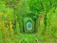 Tunelul Iubirii din Romania, inclus pe lista  Redescopera Europa  a Parlamentului European
