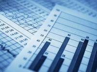 Cifra de afaceri din serviciile de piata prestate intreprinderilor a crescut cu 5,5%, datorita avansului tehnologiei informatiei si a productiei de filme si programe TV