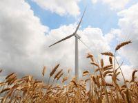 CEZ vrea sa se extinda in Polonia si Slovacia. In Romania renunta la parcul eolian