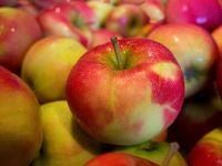 Fructele autohtone ar putea disparea din magazine si piete in urmatorii ani. Romanii prefera merele, perele si prunele din import, pentru ca sunt mai aratoase
