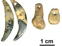 Cele mai vechi bijuterii din lume, realizate in urma cu 130.000 de ani, autentificate in Croatia
