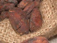 Preturi mai mari la ciocolata, dupa scaderea neasteptata a productiei de cacao din Ghana, al doilea producator mondial