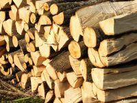 Schweighofer Holzindustrie s-ar putea retrage din Romania. 3000 de locuri de munca, in pericol