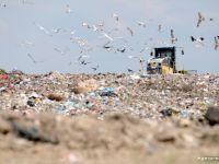 Se scumpeste gunoiul. Dupa sapte ani in care ne-am prefacut ca-l reciclam, am ajuns la scadenta. Bruxelles-ul ne pregateste amenzi de 100.000 euro/zi