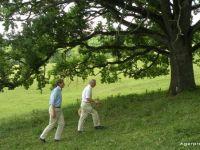 """Transilvania detine """"cheia salvarii Planetei"""". Printul Charles, la BBC, despre locul de care s-a indragostit acum 20 de ani si pe care-l da exemplu fermierilor britanici"""