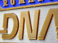 DNA confirma: ancheteaza cum a eliberat Piedone autorizatia pentru clubul Colectiv