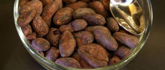34% dintre copiii din Coasta de Fildes muncesc pe plantatiile de cacao. Multi nici nu au gustat vreodata ciocolata