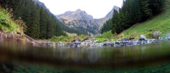 Romania ar putea avea cel mai mare parc national din Europa