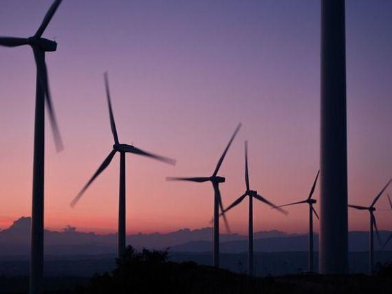 Dupa cum bate vantul. Energia eliana acopera aproape un sfert din productia de electricitate a Romaniei