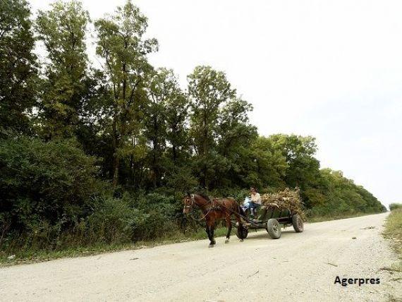 În secolul vitezei, România merge cu căruța: o treime din drumuri sunt pietruite şi de pământ și doar sub 5% sunt autostrăzi