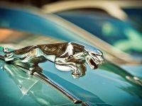 Tiriac Auto isi extinde portofoliul cu 18 modele noi in acest an, inclusiv de la marci premium precum Jaguar, Range Rover si Mercedes-Benz