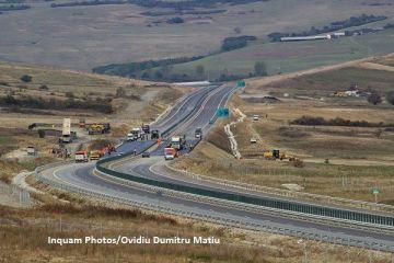 Deși pare o glumă, un gândac este cea mai nouă piedică în calea autostrăzii Pitești - Sibiu. De ce condiționează Comisia Europeană finanțarea