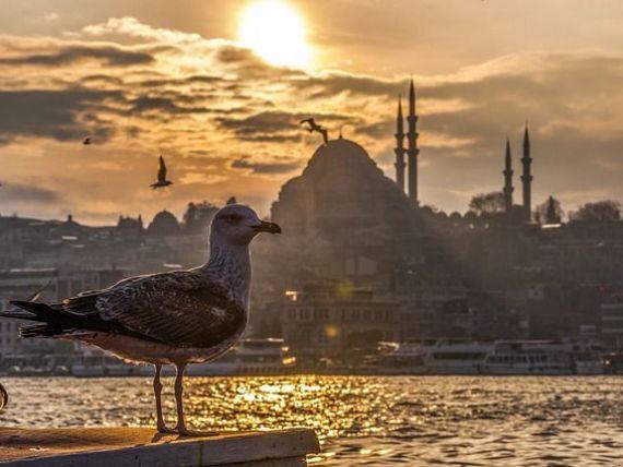 Platforma online Netflix va lansa primul sau serial original turcesc, care va explora istoria culturala a Istanbulului