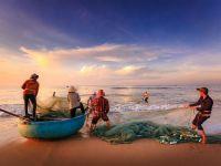Cei care vor să deschidă o afacere în domeniul pescuitului pot primi până la 4 mil. euro de la stat. Ce pot face cu banii și ce condiții trebuie să îndeplinească