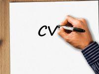 Multinaționalele fac angajări pentru peste 6.000 de poziții, disponibile la Angajatori de Top. În ce domenii sunt cele mai multe oferte și ce specialiști caută companiile