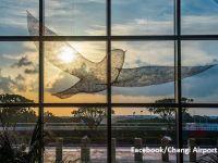 Cum arată cel mai bun aeroport din lume. Changi din Singapore deţine prima poziţie din 2013. Care este cel mai bun aeroport din Europa
