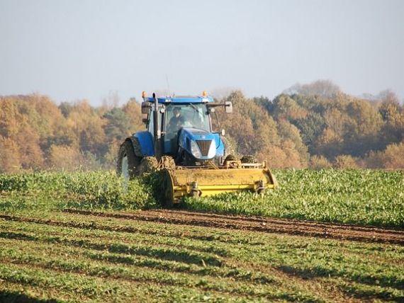 Un sfert din populația României lucrează în agricultură. Media UE este de 4,5%. Majoritatea angajaților din țările dezvoltate lucrează în servicii