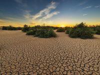 ONU: Anul 2019 încheie cel mai călduros deceniu din istoria înregistrărilor meteo. Foametea, din nou în creştere, din cauza dezastrelor naturale