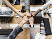 """Două treimi dintre companii recrutează până la 10 angajați noi în a doua parte a anului. Care sunt cele mai """"vânate"""" meserii"""