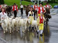 Țara în care cetățenii votează pentru respingerea acordării ajutoarelor de stat pentru fermieri