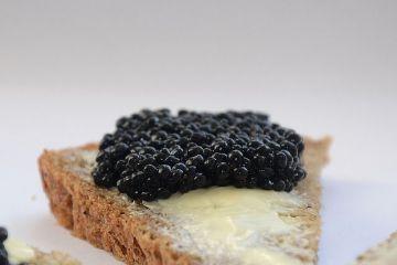 România va produce icre negre. Unde va fi  capitala caviarului