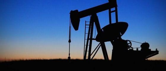 OPEC şi-a redus estimările privind cererea de petrol din acest an şi din 2021, în ciuda optimismului generat de vaccinul pentru dezvoltat de Pfizer