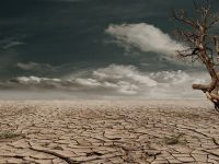 Măsurătorile temperaturii de la suprafaţa Pământului confirmă încălzirea globală