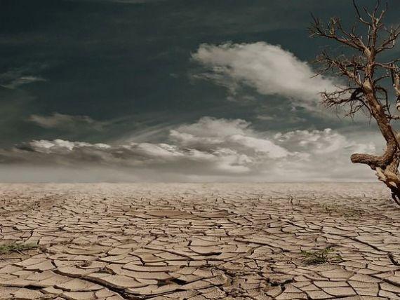 Europa, cea mai afectată de încălzirea globală. Țările mediteraneene, Balcanii și Turcia, predispuse deșertificării