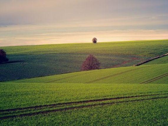 Țara vecină României care decide prin referendum dacă vinde terenuri străinilor. Majoritatea populației se opune