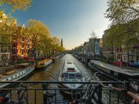 FT: Olanda, gata să se retragă din proiectul bugetului comun al zonei euro. Ce condiții pune Amsterdamul